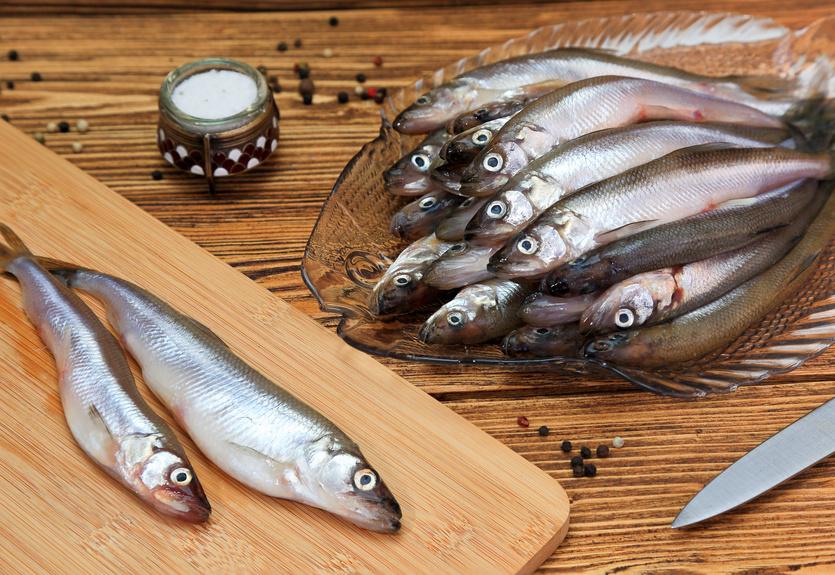 Корюшка - внешний вид рыбы