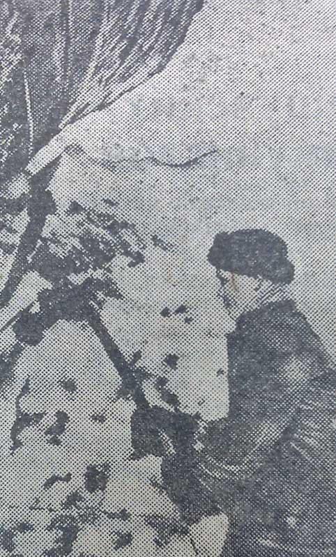Некрасов Евстигней Константинович