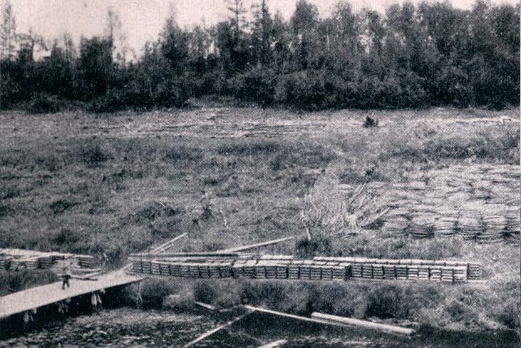 Зарубки на память: Игарка, зима 1929-1930 года