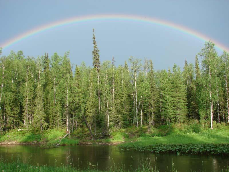 Тундра: фото с радугой на фоне реки